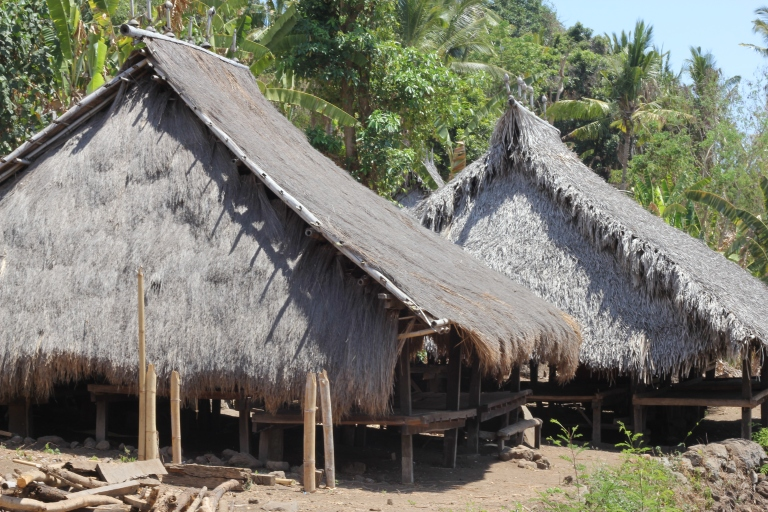 Traditional huts