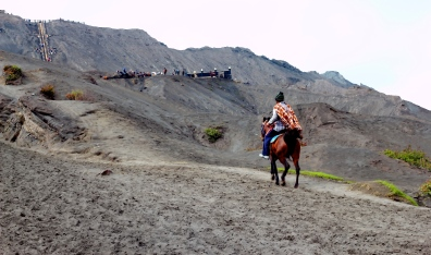 Local horses used to transport walkers closer to the volcano vent