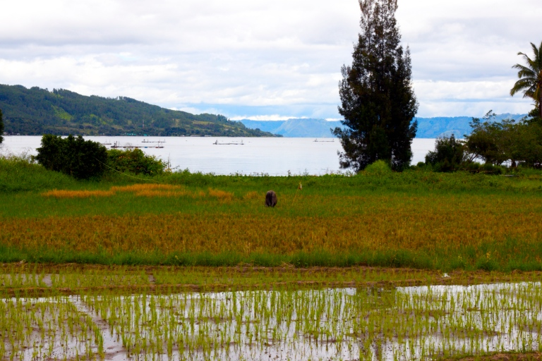 Our first view of Danau Toba from the mainland